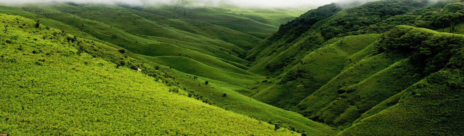 Shillong Assam Tour Package 5 Nights 6 Days Package