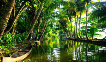 Kerala-Munnar-Alleppey-Kovalam-Thiruvananthapuram 6 Night 7 Days Tour Package. 1
